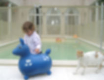 Seguridad para niños y mascotas en piscina