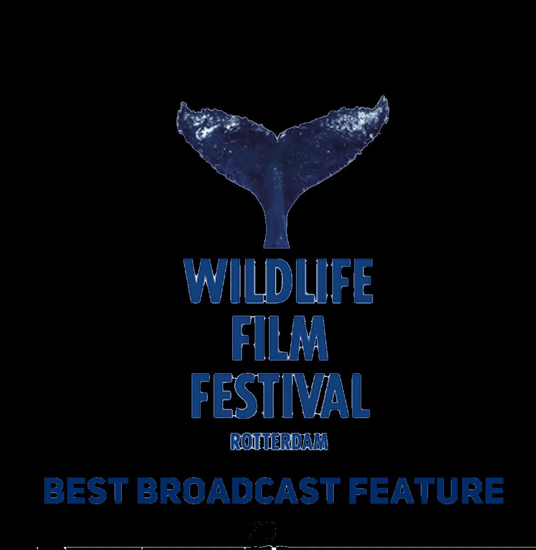 rotterdam wildlife festival award.png