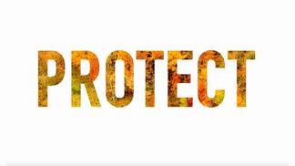 PROTECT_edited.jpg