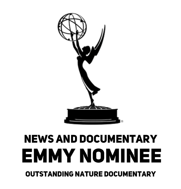 BEST EMMY.png