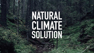 NATURAL%20CLIMATE%20SOLUTION_edited.jpg