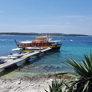 Catus island