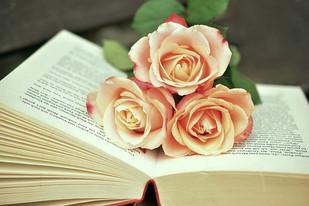 A Importância do Livro Espírita