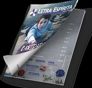 2. Revista.png