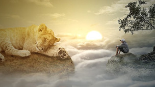 Ciência e Evolução Espiritual dos Animais