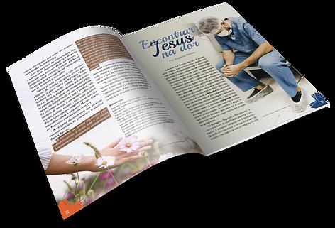 4. Revista.png