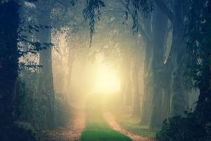 Seja Luz no Meio das Trevas