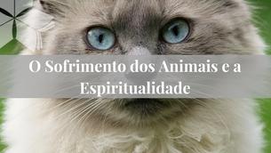 O Sofrimento dos Animais e a Espiritualidade