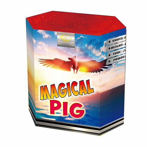 Magical Pigs