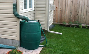 rain barrel.jpeg
