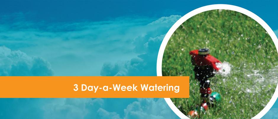 New Watering Schedule