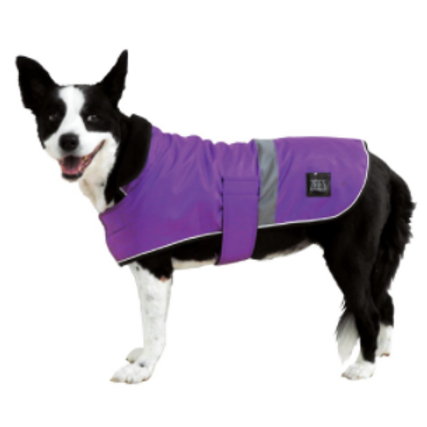 ZEEZ Dapper Dog Coat