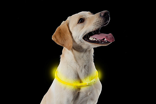 Ancol High Visibility Collar