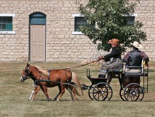 Oklahoma Cowboy HDT Results
