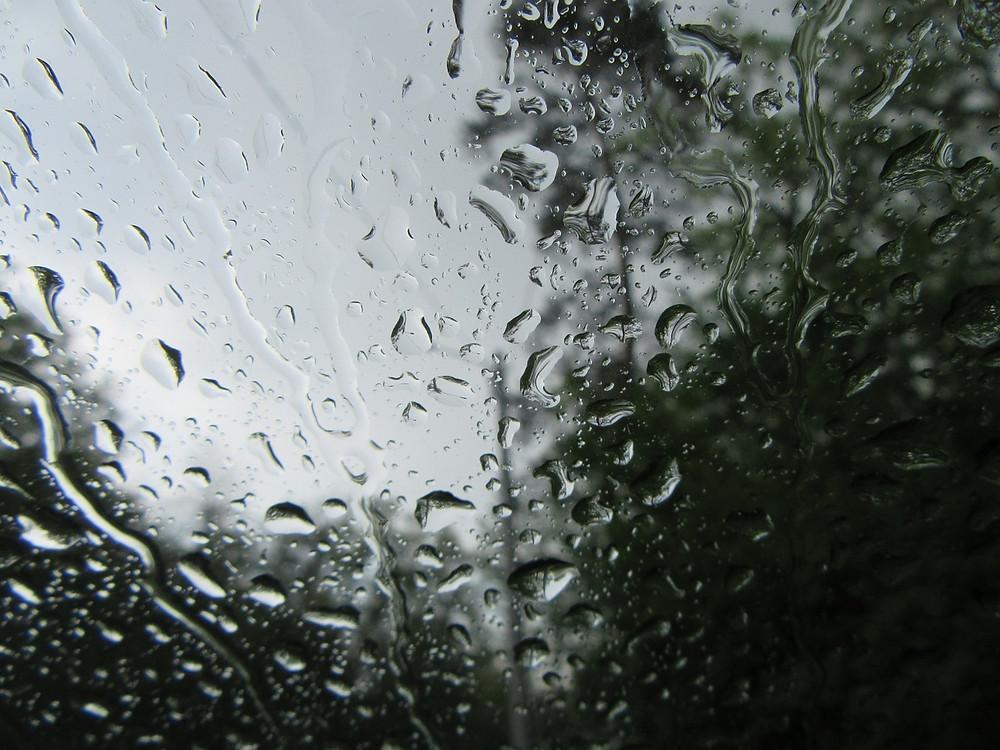 legionella in windscreens