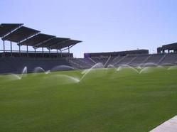 Irrigated sportsfield