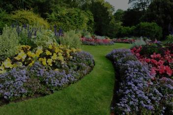 Beautiful residential garden panorama