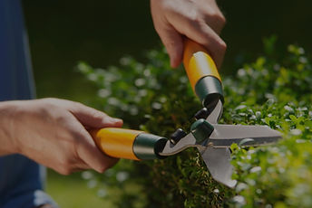 Hand hedge trimmer