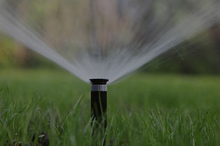 Lawn sprinkler watering grass landscape.