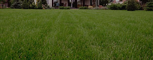 Green lawn made of natural looking artificial grass