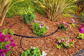 Flower bed dripline
