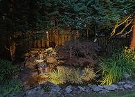 Landscape illuminated by low volatge mini beam light.