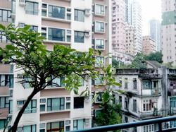 Oscary Art Terrace PMQ S511