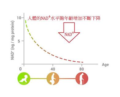 NAD graph.jpg