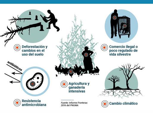 El aumento de las enfermedades zoonóticas 🌱