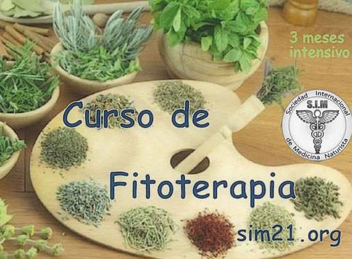 Curso completo de Fitoterapia 🍃🌾🌿🌱