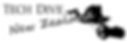Tech Dive NZ Logo.png