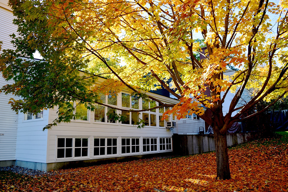 Roth Center with foliage.jpg