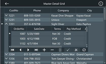 Master Detail Grid FireMomkey