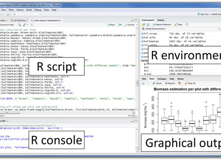 Advantages and Disadvantages of using R Programming