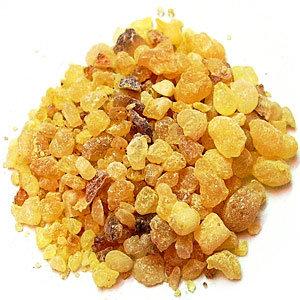 CHOYA LOBAN (AKA:  Frankincense serrata) (Boswellia serrata)