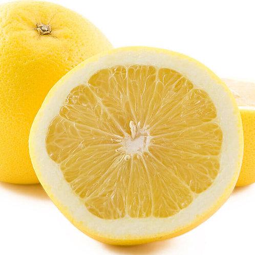 GRAPEFRUIT, WHITE (Citrus paradisi)