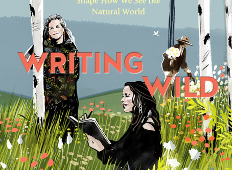Book Review: Writing Wild by Kathryn Aalto