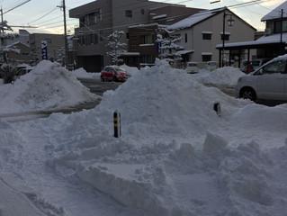 雪も一休み