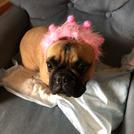 Happy Birthday Ella