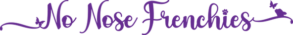 NoNoseFrenchies_purple_Logotype.png