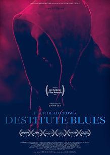 DESTITUTE poster update 2.jpg