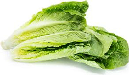 Lettuce, Romaine Hearts