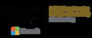 Logo_Microsoft Partner.png