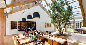 A importância do Design Biofílico no ambiente da educação