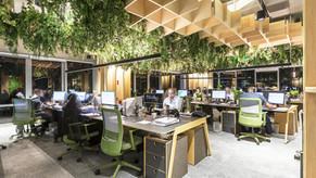 Design Biofílico foi a essência para projeto ganhador do GRI 2019 Awards