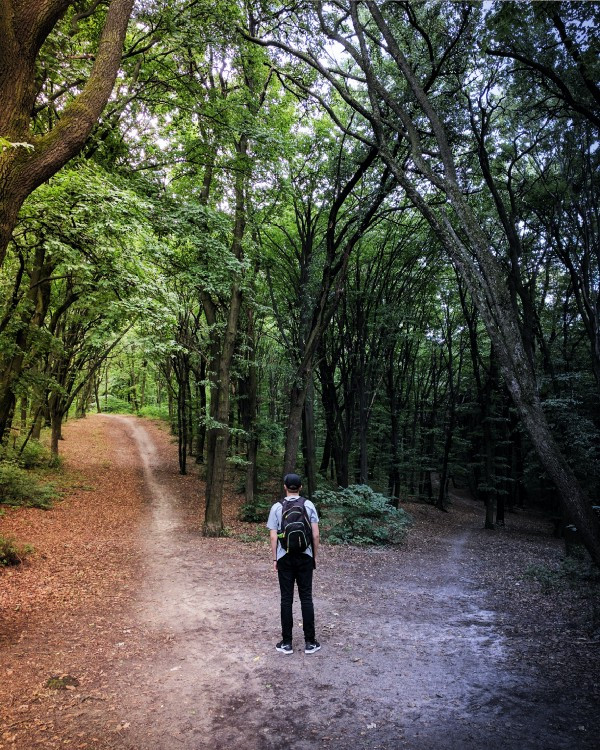 Man in the forrest choosing a direction