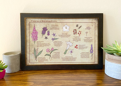 Variety of Murderous Plants // Illustrated Botanical Print // Deadly Flowers