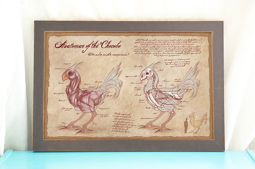 Anatomy of the Chocobo // Gamer Art Print / Geeky Home Decor- Final Fant