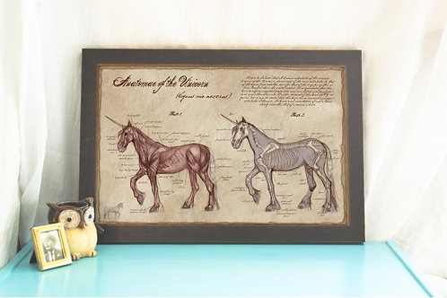 Anatomy of the Unicorn- Unicorn Poster / Medical Illustration Home Decor- Scient