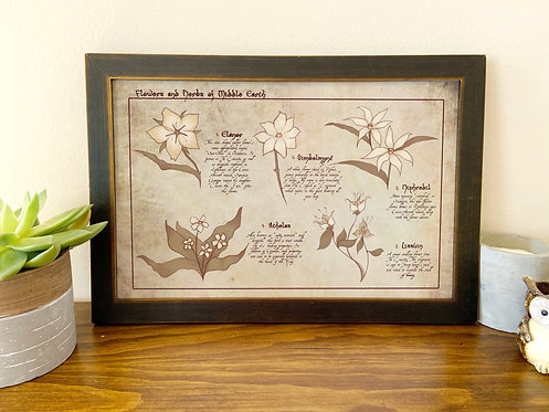 Flowers of Middle Earth // Botanical Chart // LOTR Illustration Print / Poster